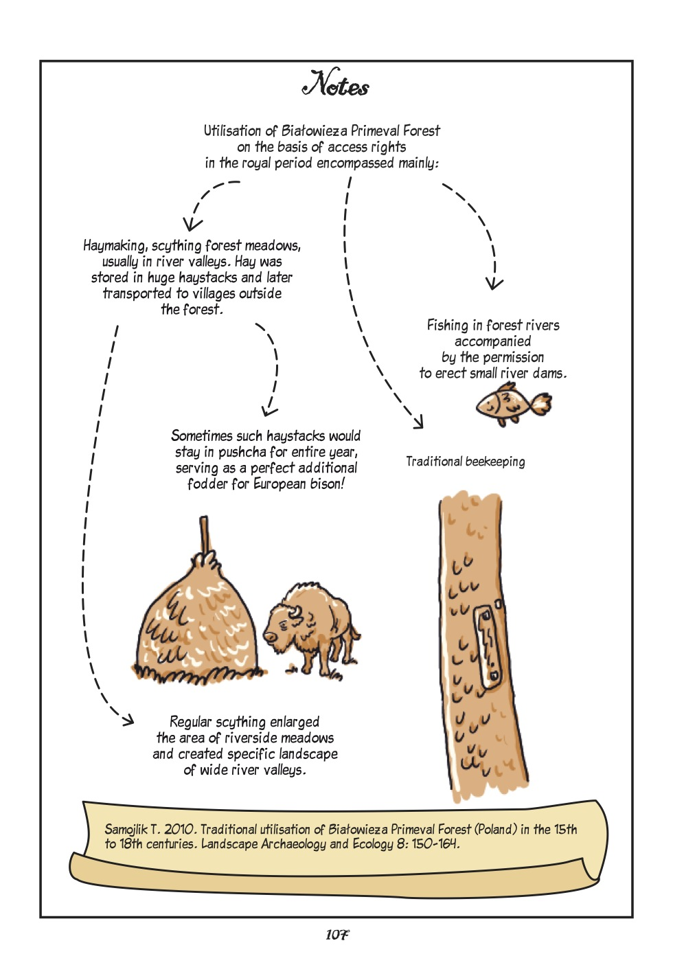 Forest beekeeper_net-page13