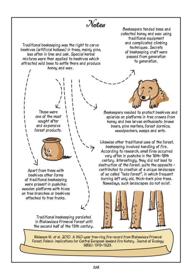 Forest beekeeper_net-page14